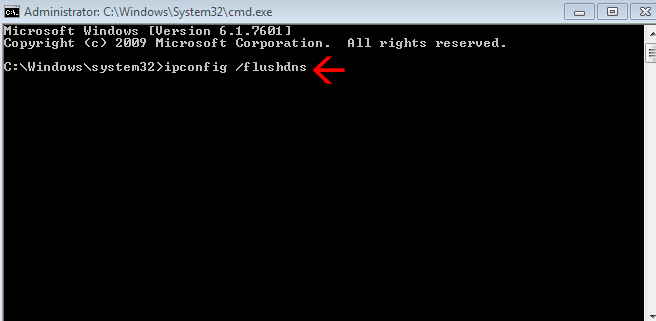 Flush ip in cmd command